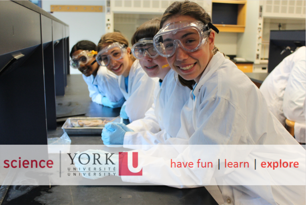 York Science 2